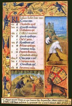 Изображение рецепта Гуляш по-фламандски